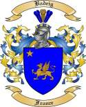 Badeig Family Coat of Arms from France