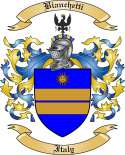 Bianchetti Family Crest from Italy