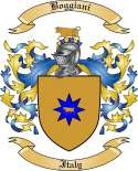 Boggiani Family Crest from Italy