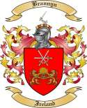 Brannyn Family Crest from Ireland