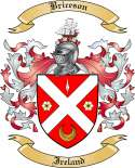 Briceson Family Crest from Ireland