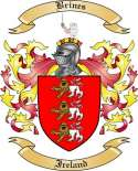 Brines Family Crest from Ireland