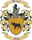 Brussa Family Crest from Italy