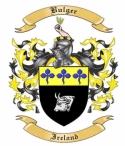 Bulger Family Crest from Ireland