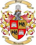 Burgi Family Crest from Germany
