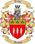 Cahey Family Crest from Ireland