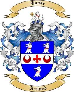 Coat Of Arms Rings Ireland