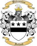 Dalcassian Family Coat of Arms from Ireland