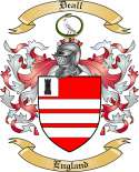 Deall Family Coat of Arms from England