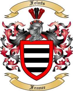 Feints Family Coat of Arms from France2