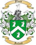 Flood Family Coat of Arms from Ireland