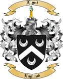 Flynt Family Crest from England