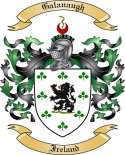 Galanaugh Family Crest from Ireland