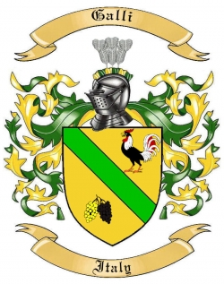 Galli Family Crest from Italy
