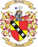 Hannan Family Coat of Arms from Ireland
