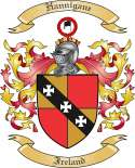 Hannigane Family Coat of Arms from Ireland
