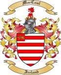 Mac Caul Family Coat of Arms from Ireland