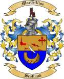 Mac Gillise Family Crest from Scotland