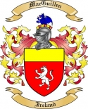 Mac Guillen Family Coat of Arms from Ireland