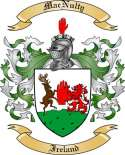 Mac Nulty Family Crest from Ireland