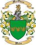 Mac Owen Family Coat of Arms from Wales