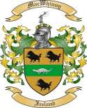 Mac Whinny Family Crest from Ireland