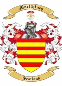 Mac llhiney Family Coat of Arms from Scotland
