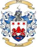 Niell Family Crest from Ireland