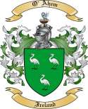 O'Ahem Family Crest from Ireland
