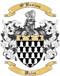 O'Banion Family Crest from Wales