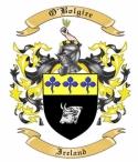 O'Bolgire Family Coat of Arms from Ireland