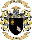 O'Bradigan Family Coat of Arms from Ireland2