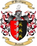 O'Bradigan Family Coat of Arms from Ireland