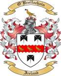 O'Brollachain Family Coat of Arms from Ireland