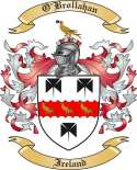 O'Brollahan Family Coat of Arms from Ireland