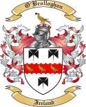 O'Brolloghan Family Crest from Ireland
