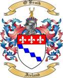 O'Bruik Family Coat of Arms from Ireland
