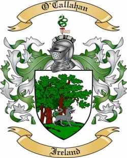 ocallahan family crest from ireland by the tree maker
