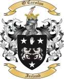 O'Carolan Family Coat of Arms from Ireland