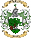 O'Ceallachain Family Coat of Arms from Ireland