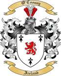 O'Cooney Family Coat of Arms from Ireland