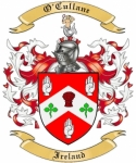 O'Cullane Family Coat of Arms from Ireland