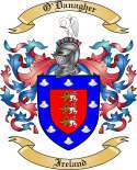 O'Danagher Family Crest from Ireland