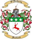 O'Docherty Family Coat of Arms from Scotland