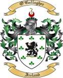 O'Gallagher Family Coat of Arms from Ireland
