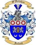 O'Holohan Family Crest from Ireland
