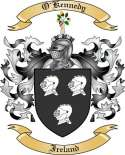 O'Kennedy Family Coat of Arms from Ireland