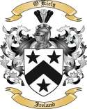 O'Kiely Family Crest from Ireland