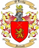 O'Leahy Family Coat of Arms from Ireland