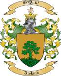 O'Quill Family Coat of Arms from Ireland